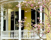 Southern Decor - Spring Photography - Charleston Photograph - Yellow Pink Flower Print - Front Porch Wall Art Charleston Home Photo
