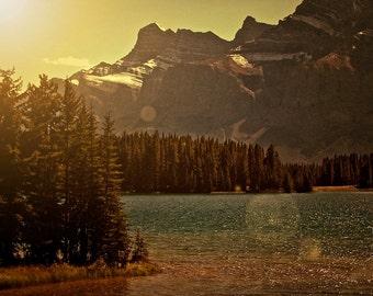 Mountain Decor - Woodland Art - Dusk Night - Vintage Inspired Western Photograph - Banff Canada Photo - Sunkissed Forest Print