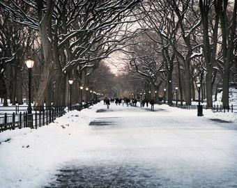 New York City Print - Winter Home Decor - Literary Walk Photograph - Snow Scene  Central Park Photo Urban Landscape Tree Photography