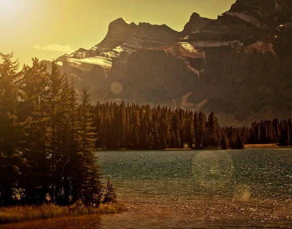 Mountain Decor - Woodland Art - Dusk Night - Vintage Inspired Western Photograph - Banff Canada Photo - Sunkissed Forest Print