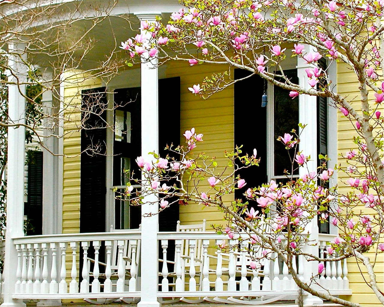 Living Room Southern Decor southern decor spring photography charleston by vitanostra