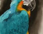Pretty Bird----Watercolor By RAY LOCKHART