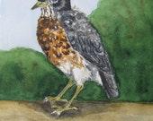 Little Robin- original watercolor by Lydia Grace