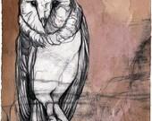 "Original Owl Illustration - ""Perch"" -  9"" x 11"""