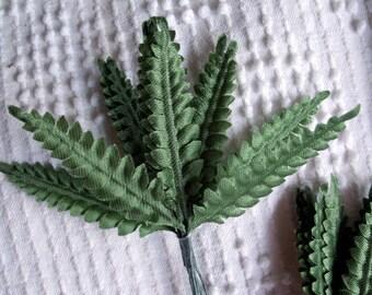 5 bunches mini fern leaves green floral supplies 60 stems foliage