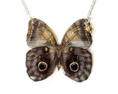 Owl Butterfly Necklace Woodland Wings Illustration Brown Grey Blue Beige Cream Papillion Summer Fashion