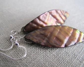Mermaid Shell Earrings - Brown