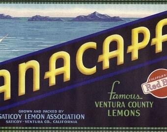 Anacapa Lemons Vintage Crate Label, 1930's