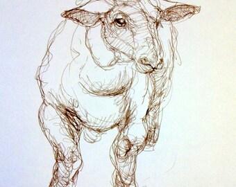 Poser - Original Sepia Ink Drawing -  Sheep