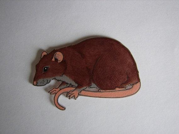 SALE Fancy Rat Brown Agouti Rat Magnet OR Badge