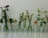 SUMMER CELEBRATIONS. Eleven recycled glass specimen vases .Great for weddings resturants.
