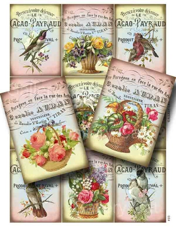 Victorian Birds and Baskets Digital Collage Sheet Instant Download Original Whimsical Altered Art by Gallery Cat CS23