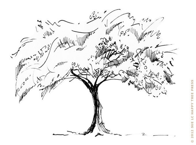 Maple Tree Black And White Drawing Japanese Maple Tree Ink