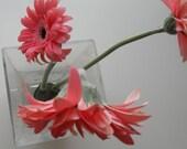 White Vase  Less is More