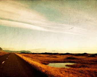 Iceland landscape, Scandinavian fine art photography, vintage, flock of Birds, straight road