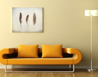 Feather photo, scandinavian art, photo painting, 3 natural feathers, shabby chic home decor, 8x10 print