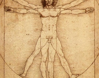 Vitruvian Man - Cross stitch pattern pdf format
