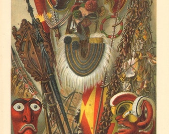 1902 Art of Oceania and Australia Original Antique Chromolithograph to Frame