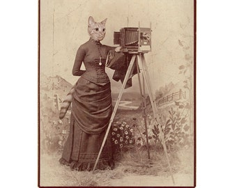 Cat, Photo collage, mixed media collage, photographer, Altered Ambrotype, Note cards, Blank Inside, sepia, funny, cat lover, SET OF 4