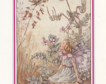 Fairy Art, Flower Art, Stork's-Bill Meadow Fairy, Flower Fairies Of The Countryside, Cicely Mary Barker, Antique Print, USA, 1989