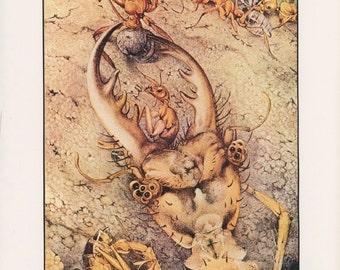 Bug Art, Insect Art, Fantastic Creatures, The Ant Lion, Edward Julius Detmold, USA, Antique Children Print
