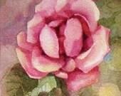 English Rose In Pink , Original Watercolor , Painting