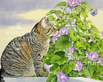Tabby Cat, Blue Copper Butterfly, and Morning Glories Giclee Fine Art Floral Bird Print, Signed A E Ruffing, on 8.5 x 11 inch art paper