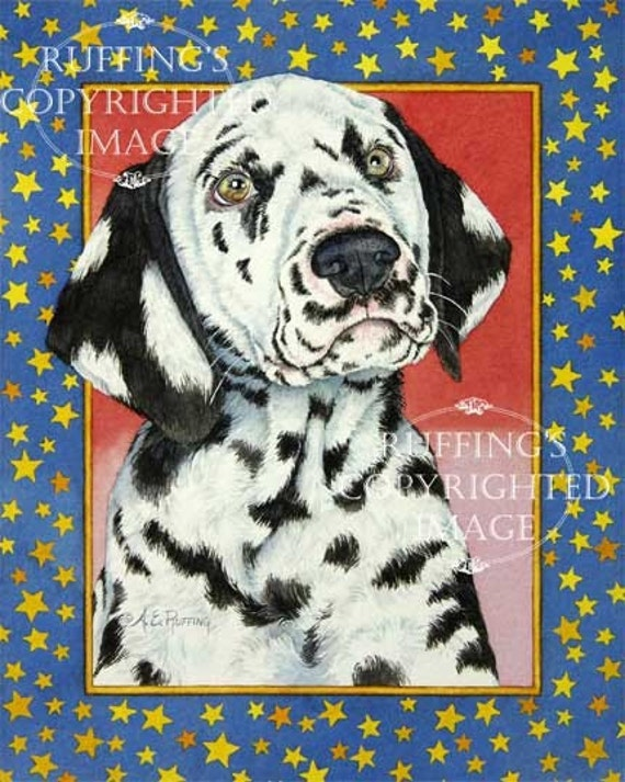 Star Dalmatian Giclee Fine Art Dog Print, Red, Blue, Yellow, Signed A E Ruffing, on 8.5 x 11 inch art paper