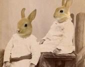 Rabbit Art, Mixed Media Collage, Collage Print, Sister Art, Two Tan Rabbits, Victorian Portrait, Anthropomorphic Art