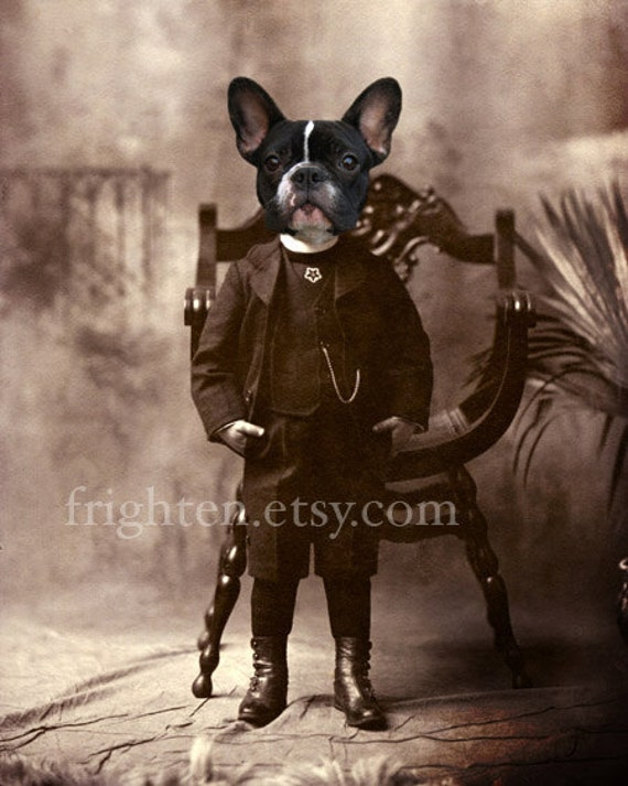 French Bulldog Art, 8x10 Print, Dog in Clothes Art, Animals in Clothes, Dog in Suit, Victorian Boy, Anthropomorphic Art