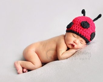 Ladybug with Antennaes Any Size perfect for photo prop girl   FREE SHIPPING