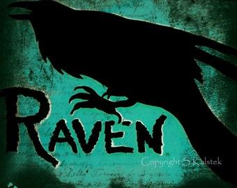 Raven Art Photograph Black Teal Wall Decor 8x10 Crow Art Funky Beach Restaurant Sign art