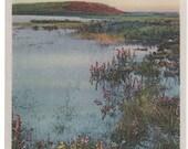 By Shimmo Shore, Nantucket Post Card,  H. Marshall Gardiner.