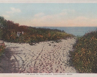 The Road to the Spring, Nantucket post card. Gardiner, PHOSTINT
