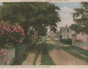 Broadway in Rose Time, Sconset, Nantucket postcard. Gardiner Nantuckrome