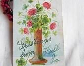 Lucky Four Leaf Clover  Vintage Postcard