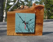 Blackbirds Elm Clock in Aqua Blue, Natural Raw Edge
