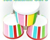12 Ice Cream Cups and DIY Printable Labels