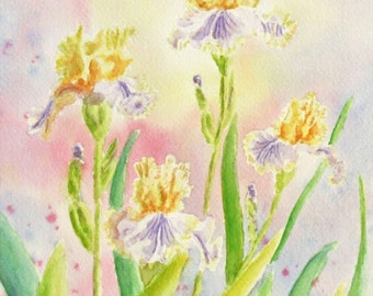 Yellow flowers Irises Original Watercolor Painting matted to 11x14 OOAC