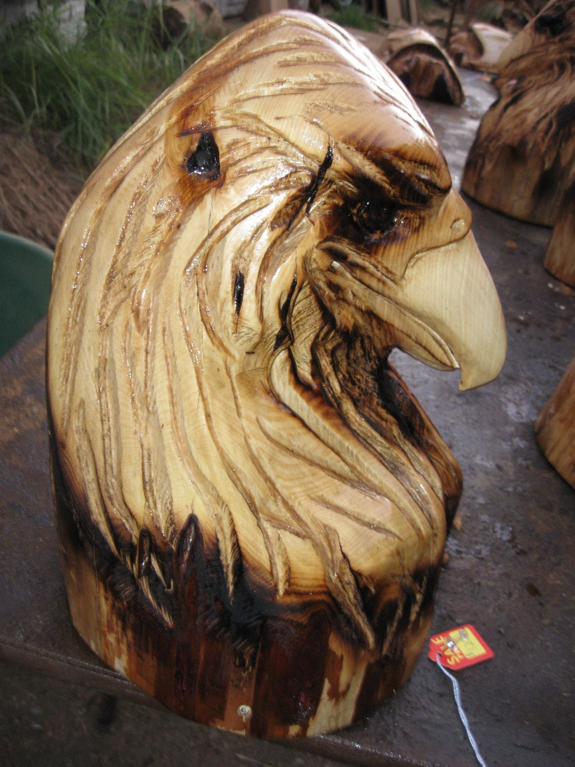 Eagle carving bust chainsaw by woodlotartisans