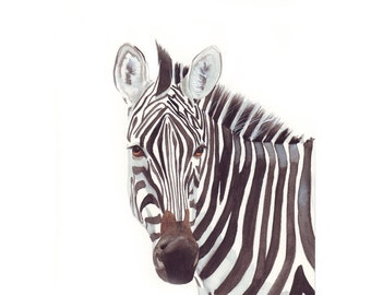 Zebra Painting wildlife ART-  Print of watercolor painting 5 by 7 print