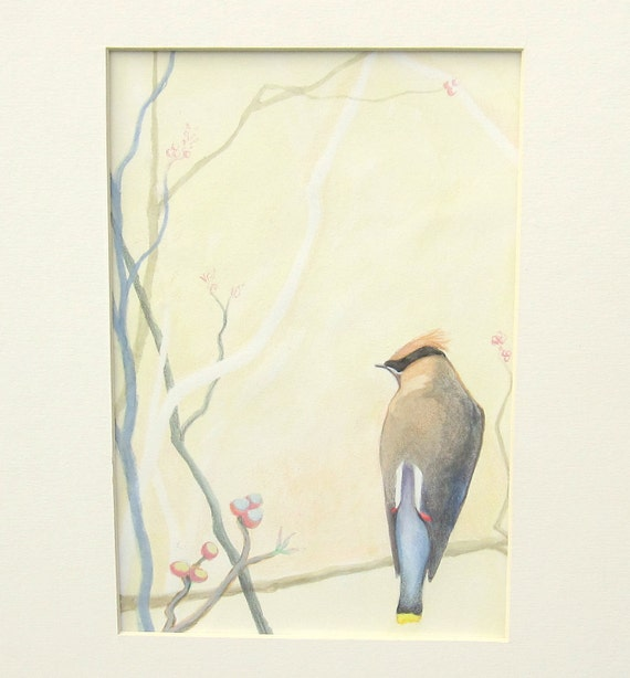 Cedar Waxwing, Original Watercolor Painting, Bird Illustration