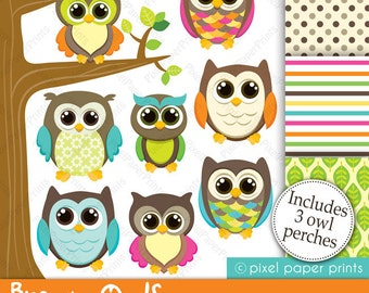 Brown Owls - Clip art and Digital paper set - Owl clipart