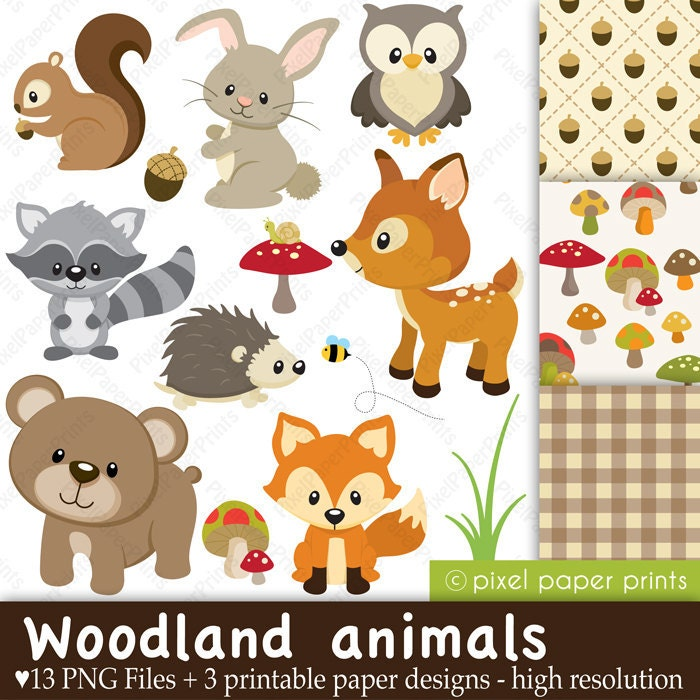 Woodland Animals Clip art and Digital paper by ...