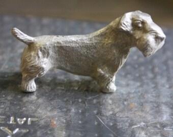 Sealyham Terrier Toy Dog