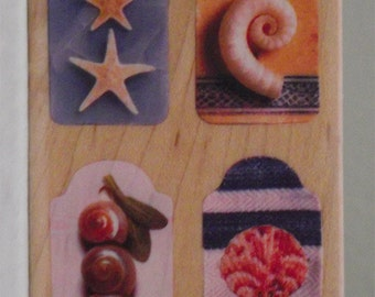Ocean Themed Rubber Stamp - Starfish Stamp -  Seashell Stamp - Ocean Stamps - Beach Stamp - Beach- Ocean - Scarpbooking Stamps