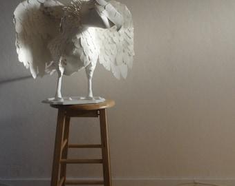 Paperdermy Condor