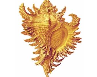 Golden Conch Shell Nautical Vintage Style Art Print Beach House Decor Yellow Goldenrod