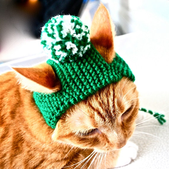 Pom Pom Cat Hat - Green and White - Hand Knit Cat Costume