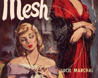 The Mesh - 10x15 Giclée Canvas Print of a Vintage Pulp Paperback cover